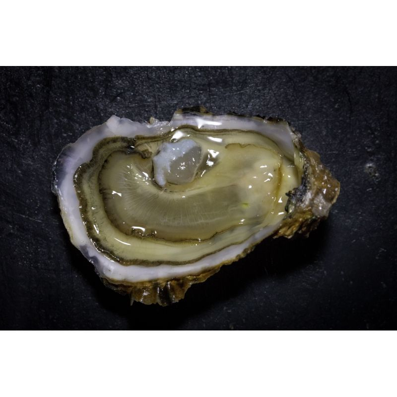 Huîtres spéciales N°4, vente au kilo ou douzaine, détail ou gros.